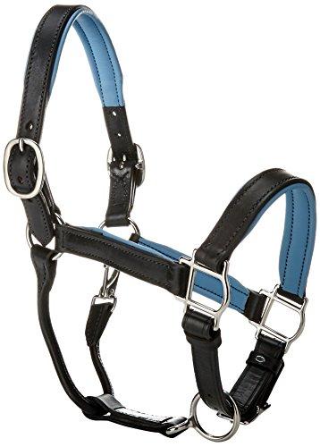 Black Leather Horse Halter - Perri's Padded Halter, Black/Sky Blue, 1