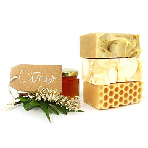 Soapcreek Artisan Soap 3 All Natural, Handmade Bars - Citrus Pack