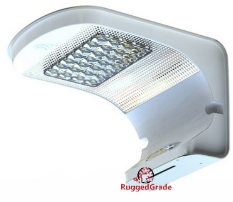 700 Lumen LED Wall Light