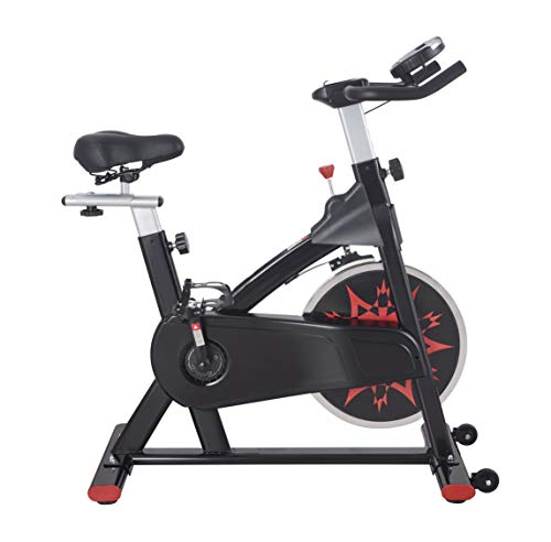 RELIFE REBUILD YOUR LIFE Exercise Bike Stationary Indoor Spin Bike for Home Gym Workout Adjustable Fitness Machine Trainer Bike