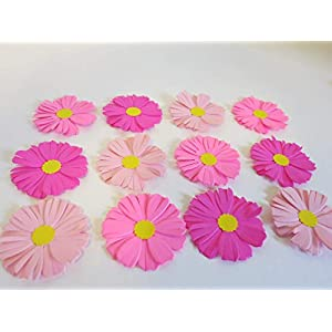 12 Pretty Shades of Pink Asters, 2 Inch Daisy Like Perennial Floral Blooms, September Birthday 72