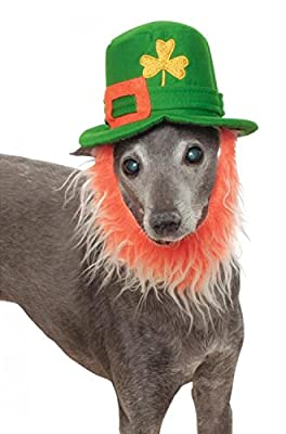 Rubies Costume Company St. Patty's Day Pet Costume Hat with Beard