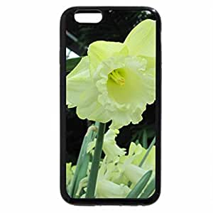 iPhone 6S / iPhone 6 Case (Black) Essence of Flowers 40