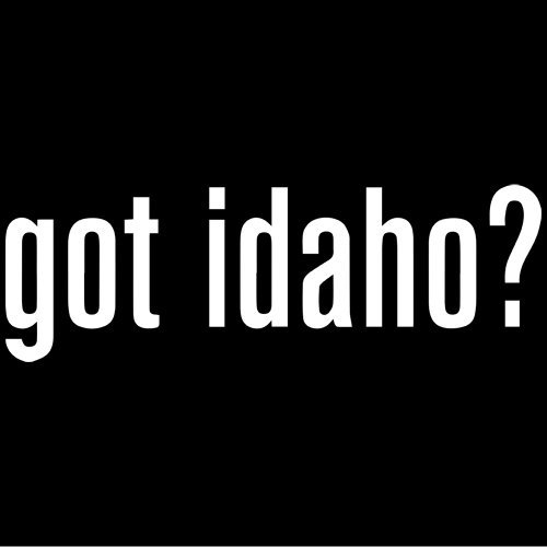 (Set of 3 - Got Idaho? Decal Sticker Color: White- Peel and Stick Vinyl Sticker )