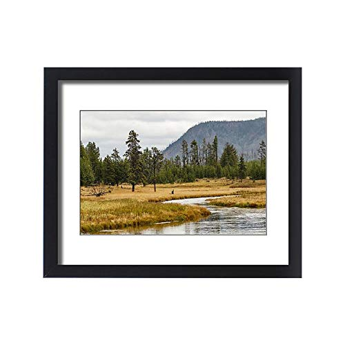 Media Storehouse Framed 20x16 Print of New Perce River Winding Through Meadow, Yellowstone National Park (18245717)