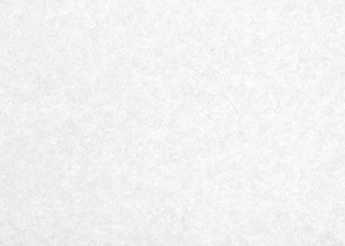 Glorex Craft Felt 250 g, 1 Pack, 1 Unit, Felt, White, 30 x 20 x 0,2 cm