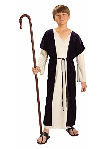 Forum NoveltiesBiblical Times Shepherd Costume, Child Medium -