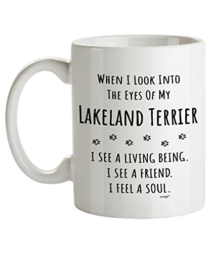 Lakeland Eye Care