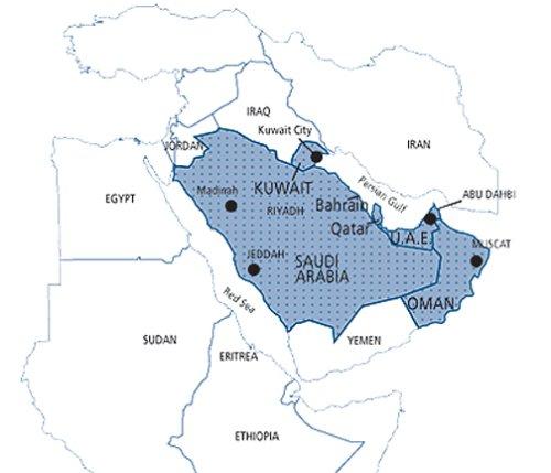 Amazoncom Garmin City Navigator 2010 Middle East Map DVD Windows