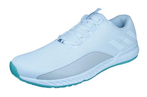 Adidas Crazytrain Pro Chille Menns Trenere / Sko Hvit