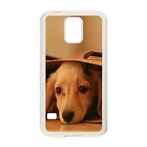 Case for Samsung Galaxy S5, Miniature Dachshund (Mini Dog) Case for Samsung Galaxy S5, Naza White