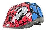 Raleigh Spider Mystery Bandit Kids Bike Helmet (Small (48 - 54cm))