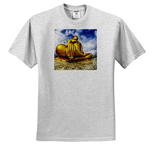 3dRose Danita Delimont - Thailand - Asia, Golden Buddha in ANG Thong Province of Thailand - Toddler Birch-Gray-T-Shirt (3T) (ts_312825_32)
