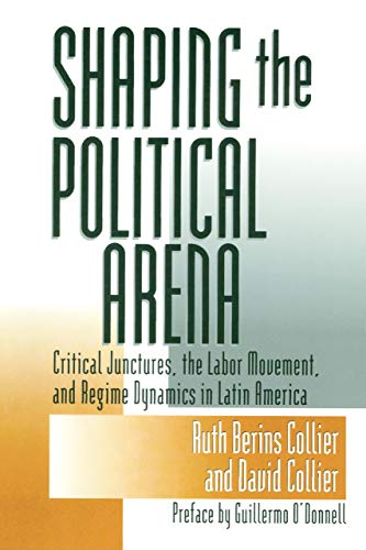 Shaping the Political Arena (Kellogg Institute Series on Democracy and Development)