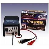 オートクラフト(Autocraft) トリクル充電器パルスプラス HC20-20 00063236