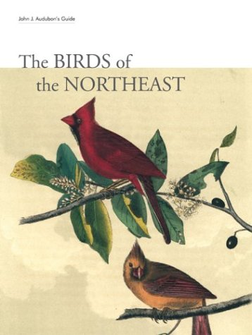 Download John J. Audubon's Guide: The Birds of the Northeast ebook