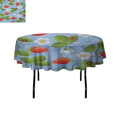 Douglas Hill Ladybugs Waterproof Anti-Wrinkle no Pollution Strawberries Daisies and Ladybugs Looks Like Ivy Plant Spotted Insects Image Table Cloth D40 Inch Blue Green Red