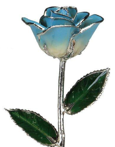 Real Rose Dipped in Platinum (2-Tone Light Blue)