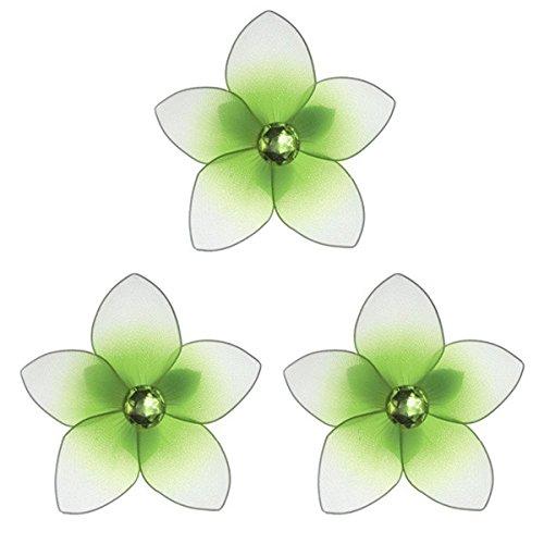 Plumeria Green - 6