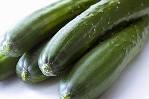 50 Marketmore 76 Slicing Cucumber Seeds Cucumis Sativus with by RDR Seeds ()