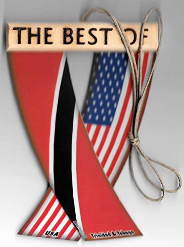 UNITY FLAGZ Trinidad and Tobago and USA United States Flag Caribbean American Rear View Mirror Hanging CAR Flags Mini Banners for Inside The CAR