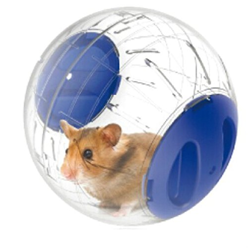 Emours-Run-About-Mini-48-inch-Small-Animal-Hamster-Run-Exercise-Ball-2-Pack