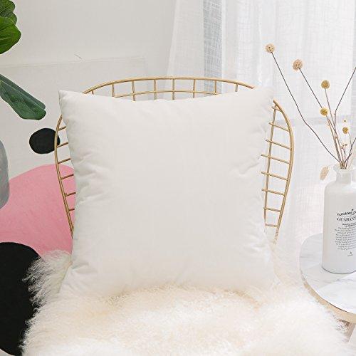 HOME BRILLIANT Ultra Soft Velvet Solid Decorative Throw Pillowcase Cover Euro Sham for Baby Sofa Living Room, 60 x 60cm(24 inches), White - Fabric Sham