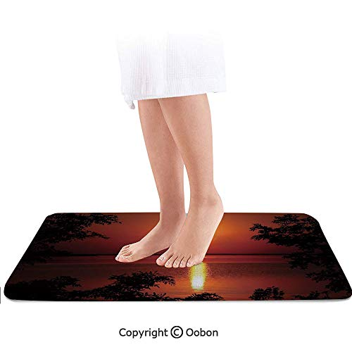 Nature Bath Mat,Sunset Horizon Skyline Reflection on The Sea Rural Fresh Dramatic View,Plush Bathroom Decor Mat with Non Slip Backing,24 X 17 Inches,Red Scarlet Vermilion