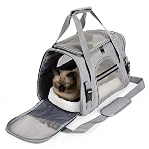 Ãzhido Soft Sided Cat Carrier, Airline Approved Pet Carrier, Sturdy Dog Carrier for Small Dog, Puppy, Medium Cat, Kitten…