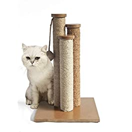 AmazonBasics Cat Scratching Post with Toy