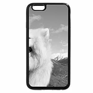 iPhone 6S Plus Case, iPhone 6 Plus Case (Black & White) - Samoyed