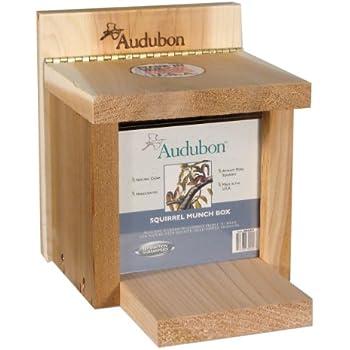 Woodlink NASQBOX Audubon Squirrel Munch Box Feeder