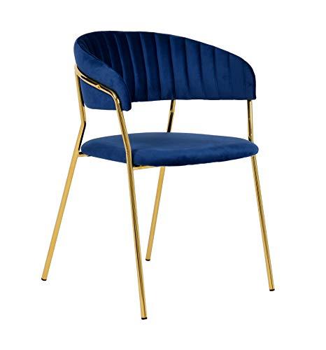 (TOV Furniture TOV-D4312 Padma Contemporary Velvet Upholstered Dining Room Side Chair, 22.8