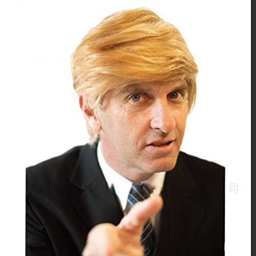 Halloween Costumes Donald Trump Wig Adult Costume Accessory PresidentialHairpiece Wigs,Set of (Art Attack Crafts Halloween)