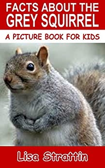 Facts About The Grey Squirrel (A Picture Book For Kids 62 ...