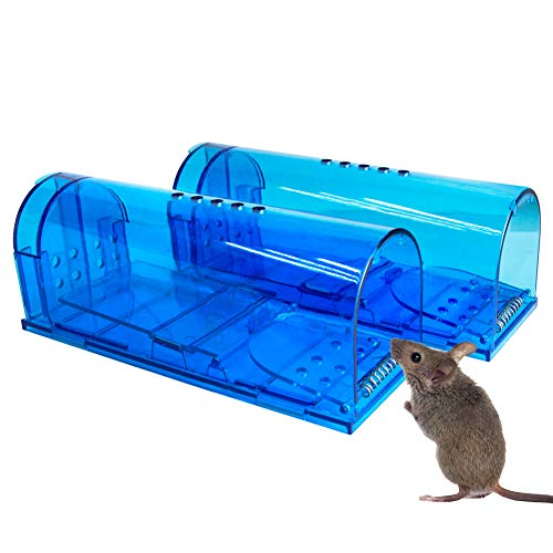 Humane Mouse Trap | 2 Pack Catch and Release Mouse Traps That Work | Mouse Trap No Kill for mice/Rat/Rodent Pet Safe (Dog/Cat) Best Indoor/Outdoor Mousetrap Catcher Non Killer Small Mole Capture Cage