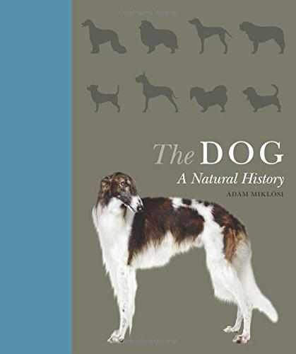 The Dog – A Natural History