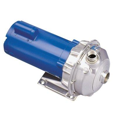 Goulds 1ST1D2D4 Centrifugal Pump ()