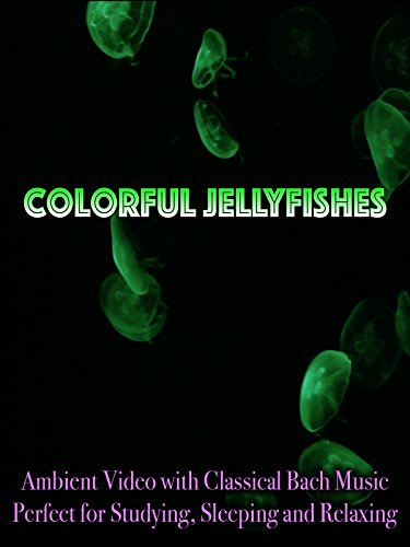 Colorful Jellyfishes Ambient Video with Classical Bach Music Perfect for Studying, Sleeping, and Relaxing (Jellyfish Video)