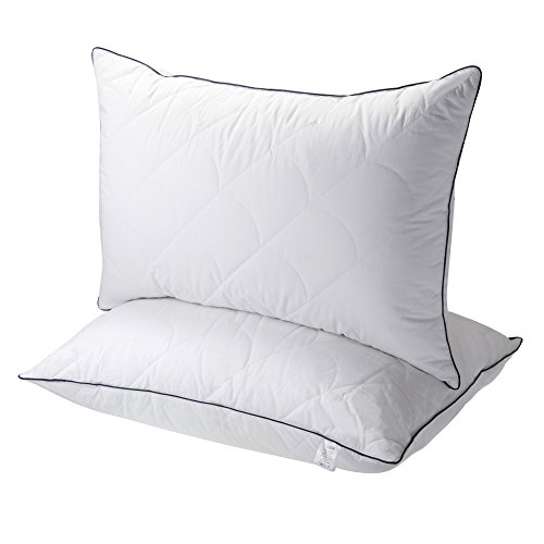 Sable Pillows for Sleeping, Registered with FDA Goose Down Alternative Bed Pillow 2 Pack, Super Soft Plush Fiber Fill, Adjustable Loft, Relief for Neck Pain, Side Sleeper, Hypoallergenic by, Queen (Pillow)