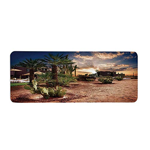 TecBillion Desert Fashionable Long Door Mat,Majestic Sky View Palm Trees and Cactus in Oasis Morocco Tropic Nature for Home Office,23.6