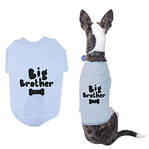 Big Brother Pet T-shirt Small Dog Apparel Puppy Cloth Funny Sky Blue Dog (Natural Big Brother T-shirt)