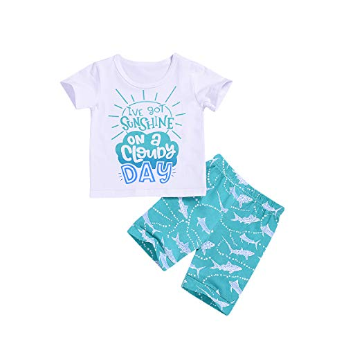 2Pcs/Set Baby Boy Shark Outfits,Sleeveless/Short Sleeve Top+ Harem Pants (Boy Shorts Set, 2-3 Years)