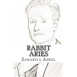 Rabbit Aries: The Combined Astrology Series