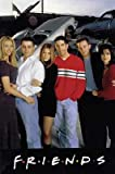 Friends - Poster: Junk Yard (Size: 27'' x 40'') (By POSTER STOP ONLINE)