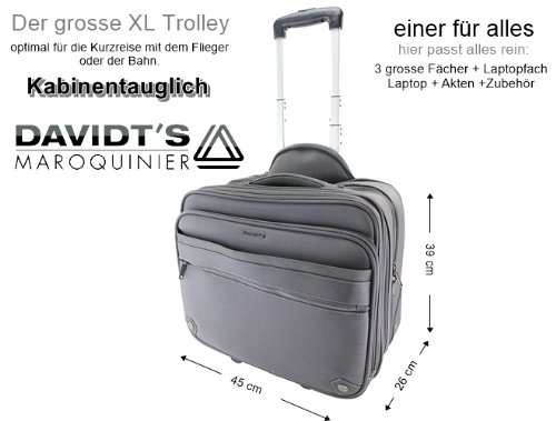 RAUMWUNDER Business Laptop Notebook Trolley Trolleytasche Bürotasche mit Laptopfach 17 Zoll Koffer Trolley Rollen Bord Gepäck