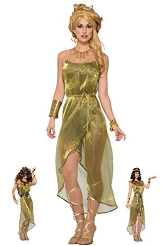 Adult Size Gold Toga Dress Adult Costume - Muse - Nymph - fits up to Size 12]()