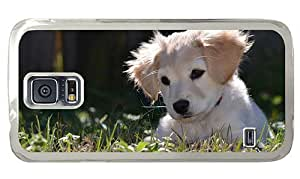 Hipster Samsung Galaxy S5 Case wholesale yellow labrador puppy PC Transparent for Samsung S5