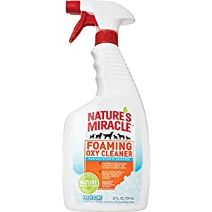 Nature's Miracle Foaming Oxy Cleaner, Fresh Scent, 24 Ounce
