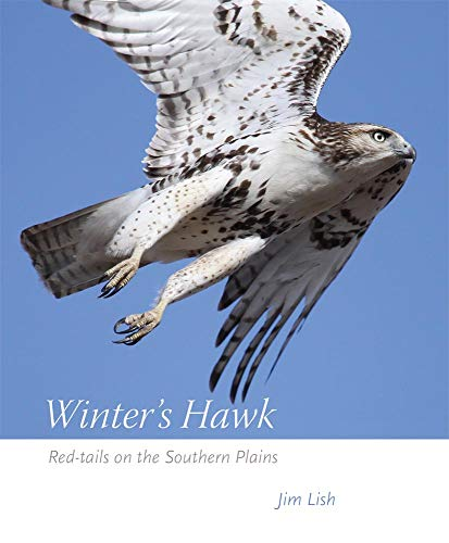 (Winter's Hawk: Red-tails on the Southern Plains)